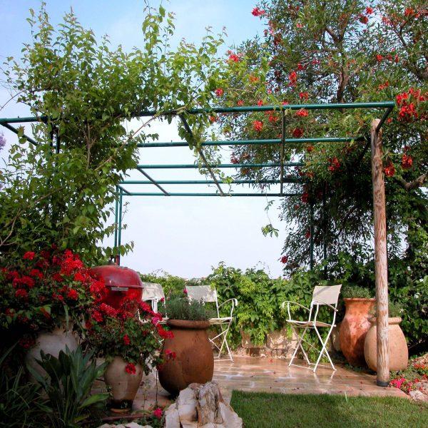 פרגולת אלומיניום לצמחייה מטפסת 2501